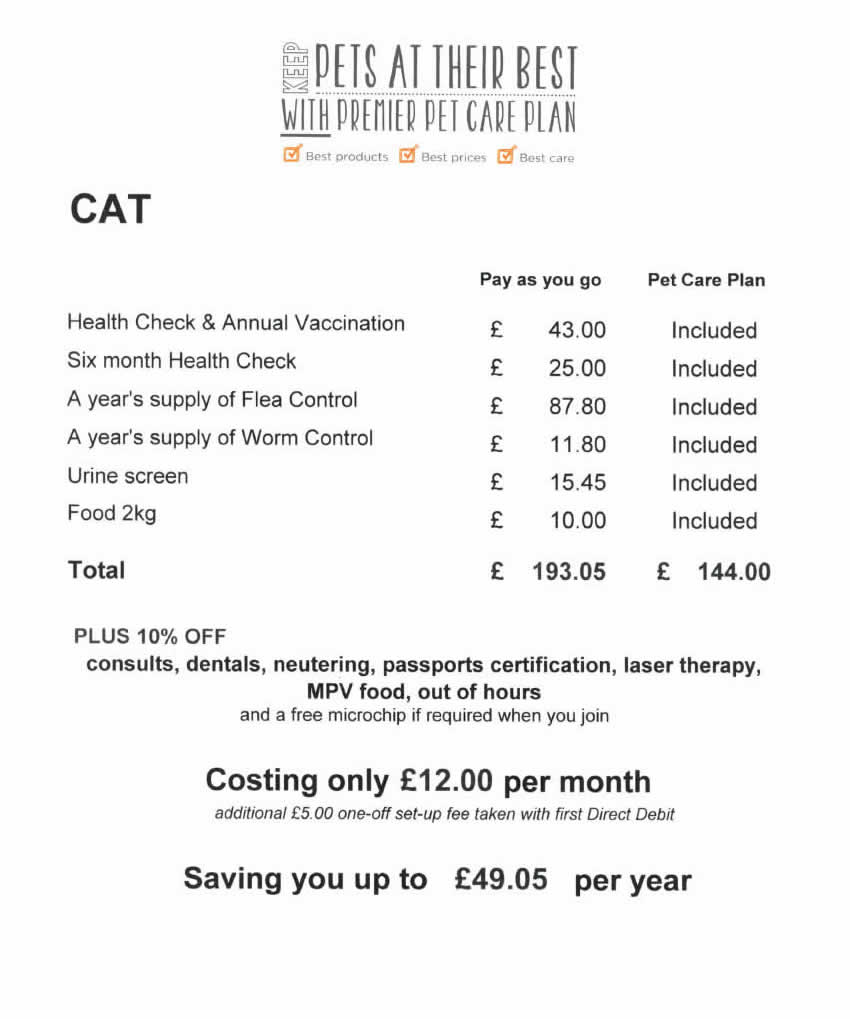 Save money with our cat plan at My Pets Vets