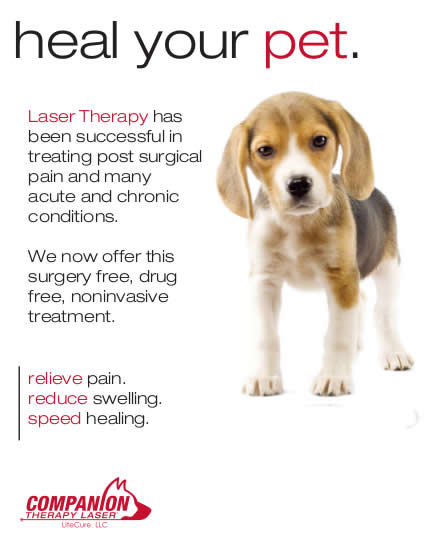 light laser therapy