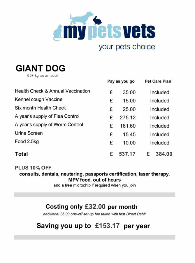 pet care plan giant dogs My Pets Vet Ltd Leigh
