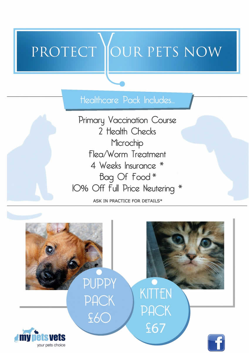 Puppy and Kitten pack at My Pets Vet Ltd Leigh