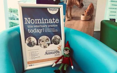 2019 Petplan Veterinary Awards